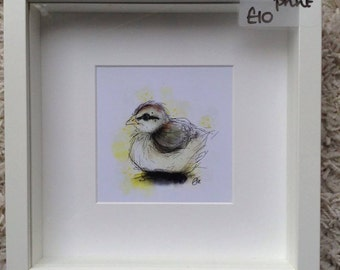 Framed chick