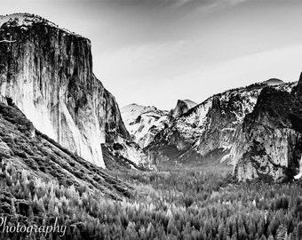 Yosemite National Park - El Capitan