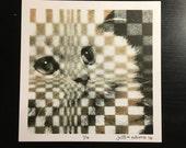 Cat Void 1