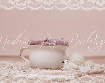 Newborn Digital Backdrop (pot/bird/pearl)