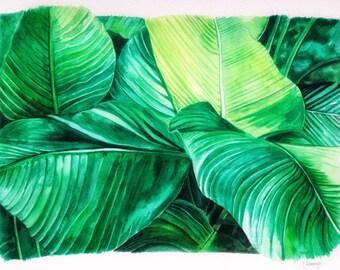 Watercolour banana leaves print, tropical leaves, home art, lush greenery