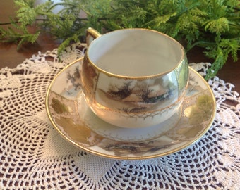Shofu hand painted teacup and saucer