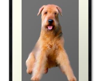 Airedale Terrier  framed Art Print