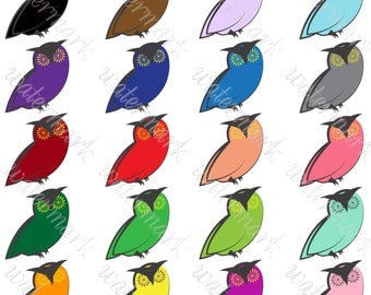 Owls Digital Clipart - Colorful Owl bright clip art Instant Download for Scrapbooking