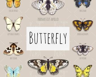 Set of butterflies, digital clip art.