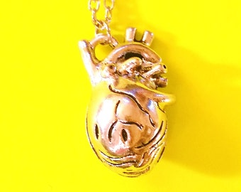 Anatomical Heart Anatomy Silver Pendant Necklace
