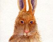 watercolor painting - Bunny Rabbit, original watercolor painting 4 x 6 brown bunny watercolor, small rabbit art