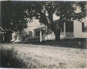 vintage photo 1895 Women On Lawn House Chesnut Hill Blackstone Mass