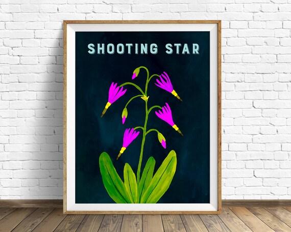 Shooting Star - wildflower, art print, black, nature, botanical, purple, botanical print, large art, wall art, illustration, flower, print