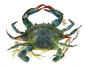 Crab watercolor-crab Art-Beach House Decor, Blue Crab Print-ocean, beach, nautical,decor