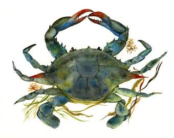 Crab watercolor-crab Art-Beach House Decor, Blue Crab Print-ocean, beach, nautical,decor
