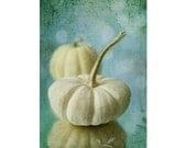 White Pumpkin Photograph,  Food Photography,  Still Life, Kitchen Wall Decor, Autumn Photography,  Halloween Decor