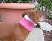 Dog Neck Warmer for Mini Dachshund, Doxie, Dachshund, Knitted Dog Cowl, Small Dog, Blue