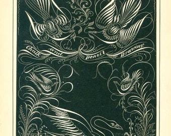 Original Antique 1880 Vintage  Blackboard Calligraphy Print, Pen and Ink Flourishing Print, White on Black, Birds, Swan, Flowers