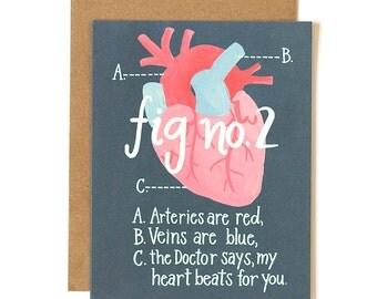 Figure 2 Heart