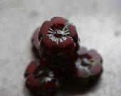 10% off CHERRY BLOOMS No. 3 .. 6 Picasso Czech Glass Flower Beads 8mm (5080-6)