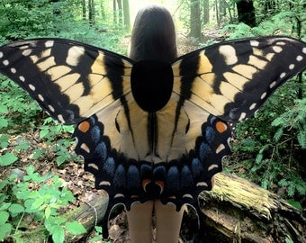 Ready to Ship - Oversized Swallowtail Butterfly Costume Wings - Made to Order - Butterfly Halloween Costume