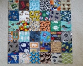 I Spy Quilt AND Matching Game Quilt Kits For Toddler BOYS, 72 Flannel 5 inch squares, Kit 6
