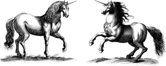 unicorns fantasy horse Digital Image Download art graphics printables clip art png clipart fantasy creature images printable wall art