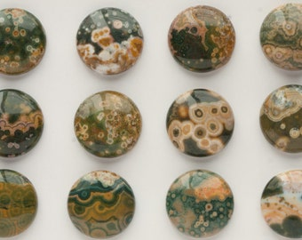 20mm Beautiful Unique Round Ocean Jasper Cabochons N-2