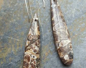 Turritella Agate Drop Earrings