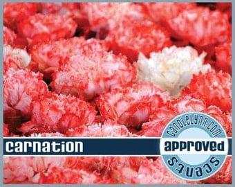 CARNATION Clam Shell Package - Tarts - Break Apart Melts