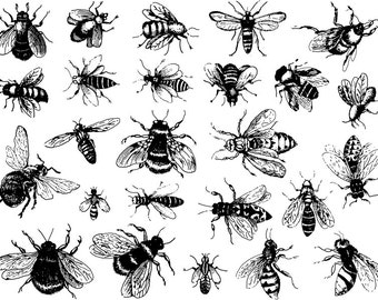 CONE 6 Vintage Bees Ceramic Decals, Glass Fusing Decals, Waterslide Decals, Ceramic Transfers
