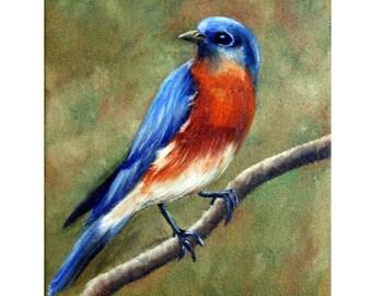Bluebird Painting,Blue Bird Painting, Bird Painting, Bluebird, Original Oil Painting, Songbird, Bird on a Twig, Helen Eaton