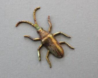 Oxidized Brass Bug Finding