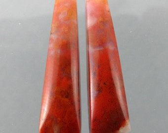 Woodward Ranch Agate Designer Cabochon Matched Pair