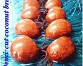 Demi Cut Coconut Bra