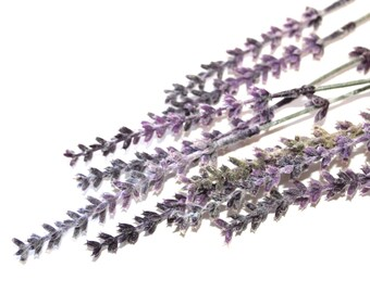 9 Lavender Sprigs - Artificial Flowers - PRE-ORDER
