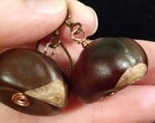 Real Buckeyes Earrings, Hypo Allergenic Earwires, Antique Copper #16072, FREE SHIPPING