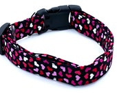 Awesome Pink Red and White Hearts on Black Valentines Dog Collar