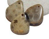Petoskey stones, hand polished, hand drilled beach stones, Michigan rocks, Earthy Pendants, DIY Jewelry supplies, up north
