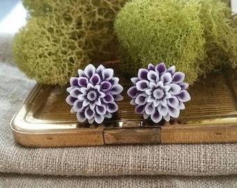 Flower Plugs, Mums, Pretty, Dark Purple