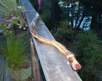 Manzanita Walking Stick (60)