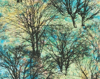 Black Tree Silhouettes on Blue Yellow - Marblehead Northern Woods - Full or Half Yard Bare Trees
