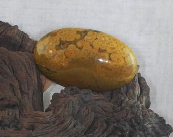 Ocean / Orbicular Jasper untreated large oval cabochon gemstone, 198.9 cts
