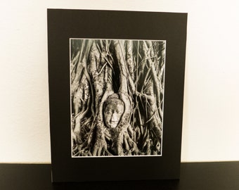 8x10 black and white photo print matted to 11x14 Buddha in tree in Thailand