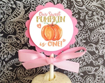 12 pumpkin first birthday cupcake toppers, 1st birthday party toppers, pumpkin birthday cupcake topper, fall pink and gold first birthday