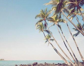 "Palm Tree Art, Wall Decor, Blue Tropical Coastal Decor, Ocean , Beach Photography, Palm Tree Print, Hawaii, Ocean Art, ""Island Escape"""