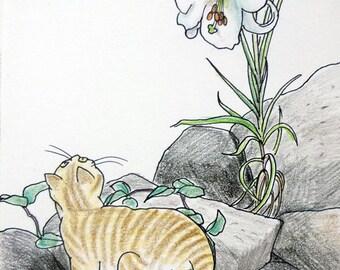 Cat original drawing - P005August2016