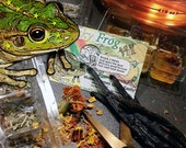 Lucky Frog Fast Cash Prosperity Herbal Wax Melts for  Magick, Prayer, Spells or Ritual