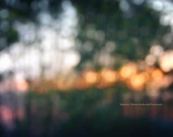 Sunsets in Abstract Series | Bokeh, Summer, Sunset, Nature Photography, Print, Canvas Wrap