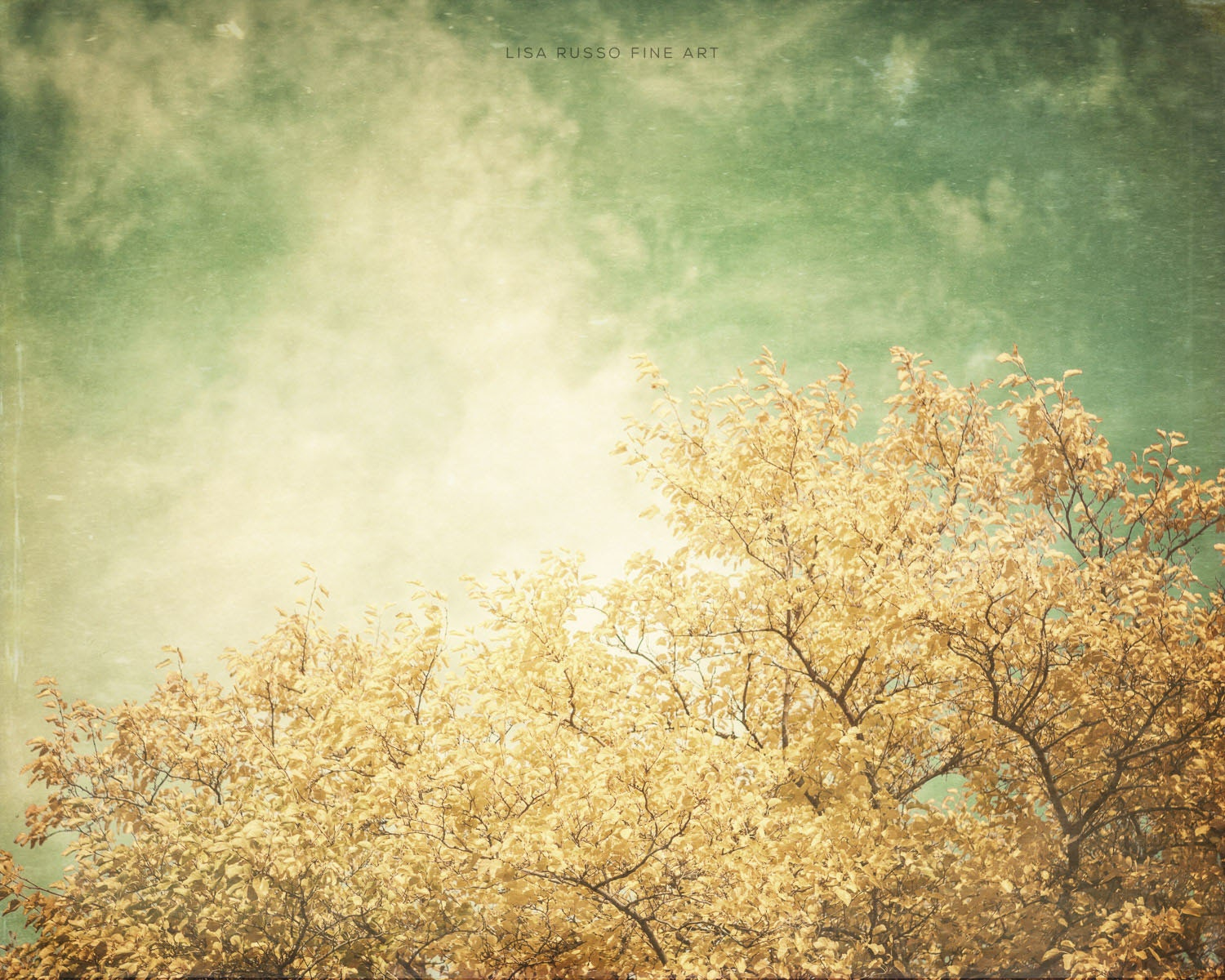 Bright Yellow Tree Print or Canvas Art Gold  Green Nature