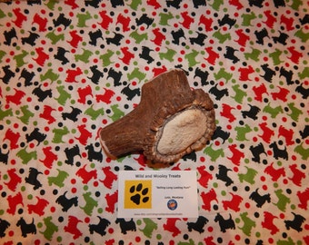 "Organic Jumbo Elk Antler Dog Chew ""Made in Montana"" (Lot C65)"