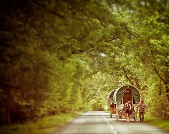 "England photography, nature art print, travel photography - ""The Road To Appleby"""