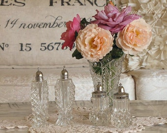 Four Sparkling Salt And Pepper Shakers, Pretty Tableware, Cottage Chic
