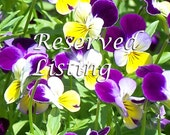 Reserved Listing for Phil